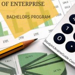 Economics of Enterprise Bachelors