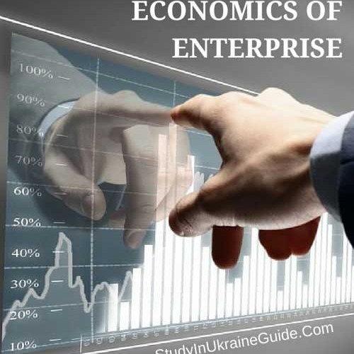 Economics of Enterprise Masters