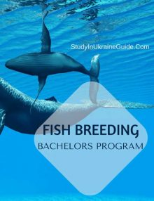 Fish Breeding Bachelors