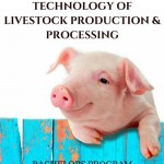 Technology Livestock Production Processing Bachelors